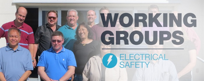 Working Groups: Electrical Safety