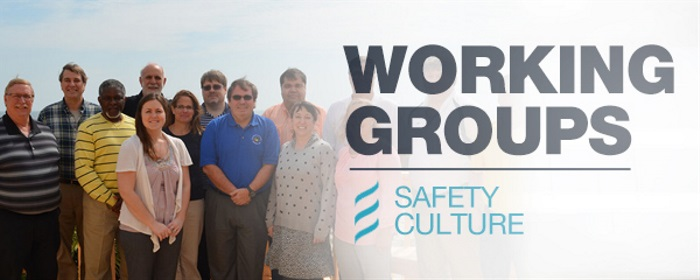 Working Groups: Safety Culture