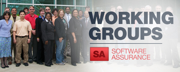 Working Groups: Software Assurance