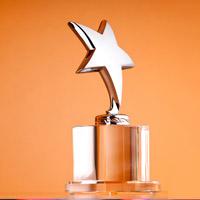 NEPP Award